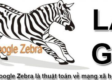Thuật toán Zebra là gì?